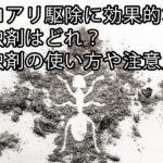 シロアリ駆除に効果的な殺虫剤はどれ?殺虫剤の使い方や注意点