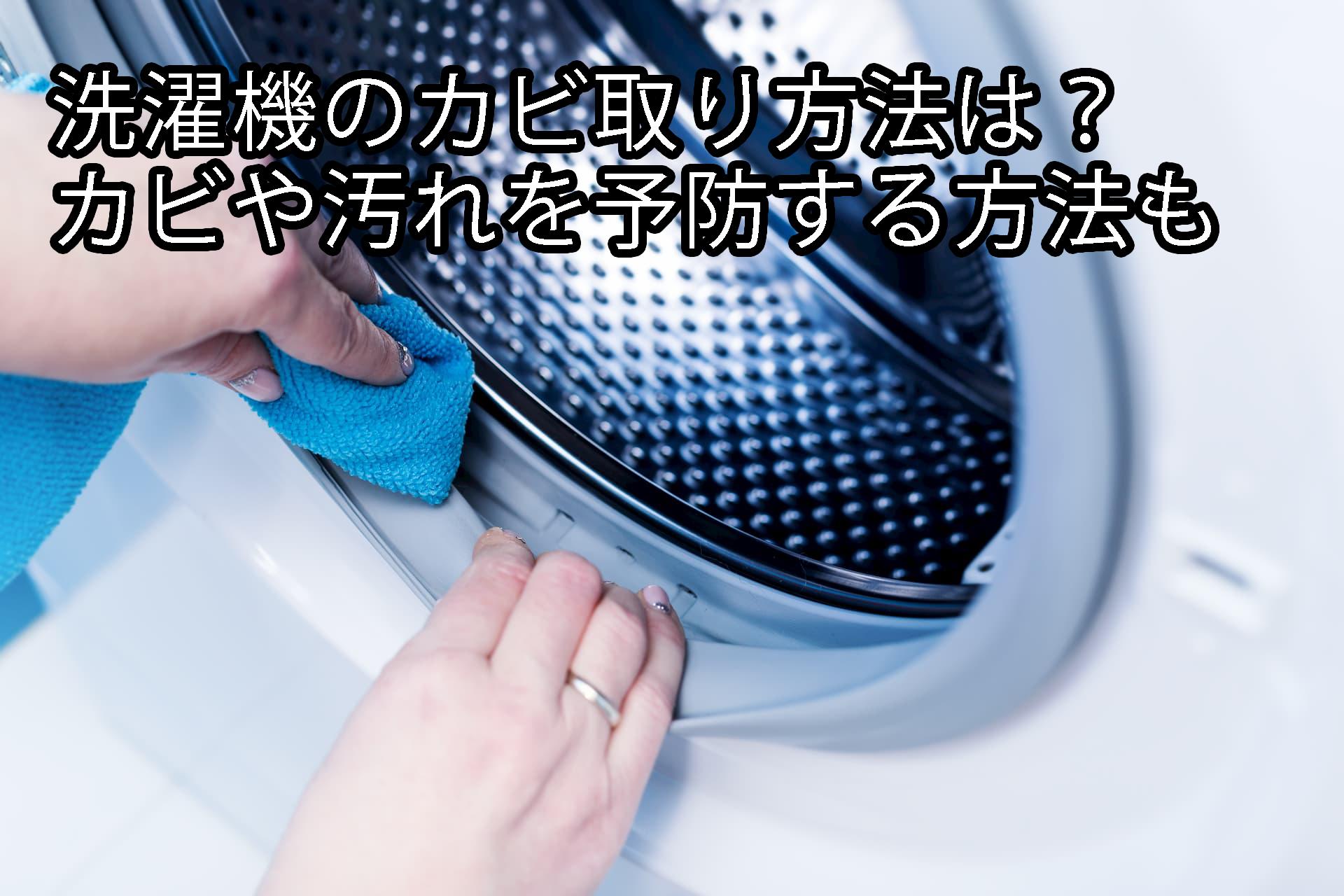 洗濯機のカビ取り方法は?カビや汚れを予防する方法も