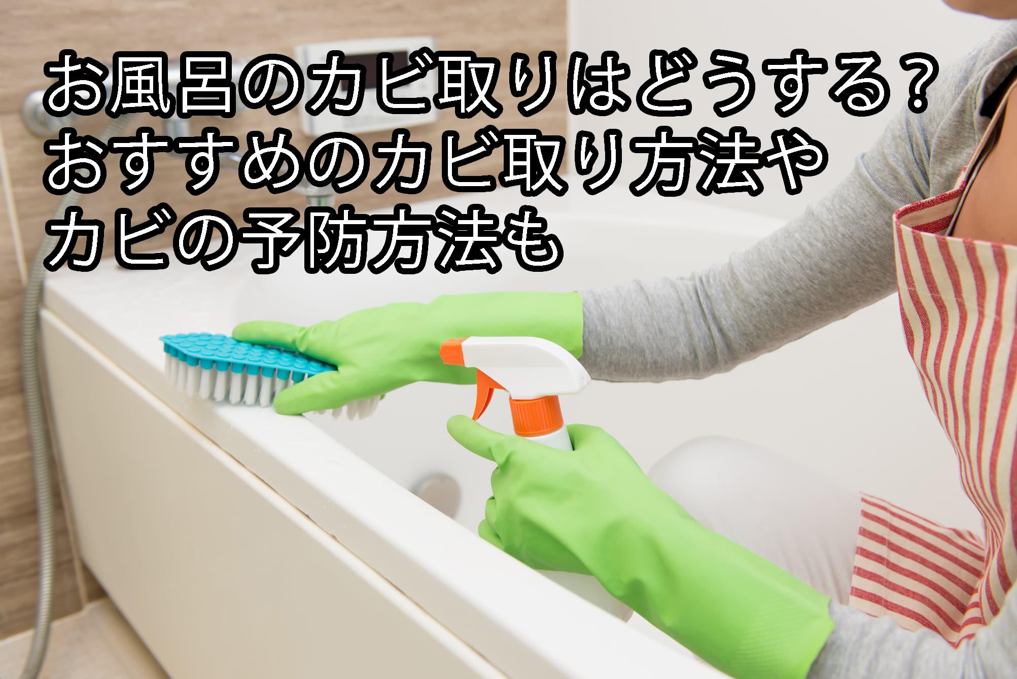 お風呂のカビ取りはどうする?おすすめのカビ取り方法やカビの予防方法も
