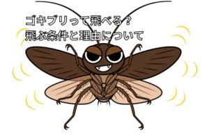 ゴキブリが飛んでいるイラスト画